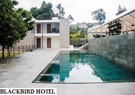 Blackbird Hotel